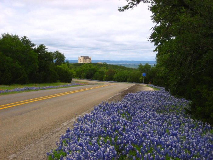 """Falkenstein Castle and Texas Bluebonnets"" by jdeeringdavis is licensed under CC BY 2.0"